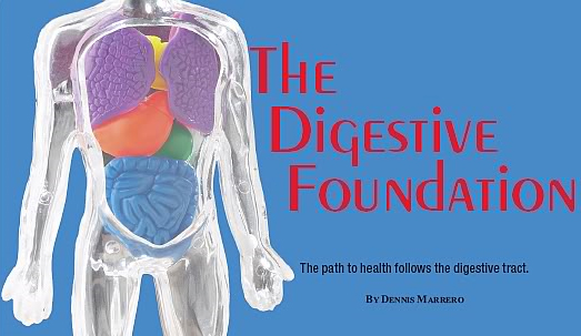 The Digestive Foundation
