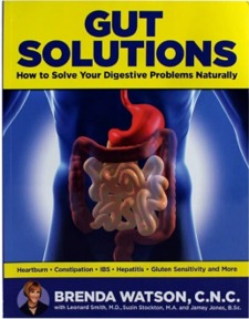 gut solutions